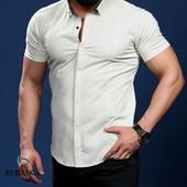 Рубашка короткий рукав светлые тона