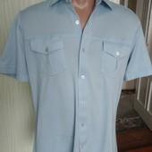 Голуба нова футболка