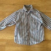 Рубашка St. Bernard 7 лет.