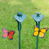 Летающая бабочка на солнечной батарее