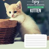 20шт Тетрадь школьная 24л. # 794831 Kittens Funny Moments 20шт.