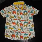 крутая рубашка TU 4-5 лет (можно до 6)  состояние отл.
