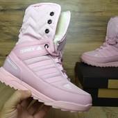 Зимние женские ботинки Adidas Terrex pink