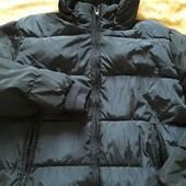 Куртка на синтепоне Cedar wood state р.48-50