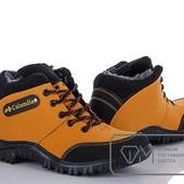 Ботинки мужские  W8287