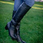 Новинка деми/зима Сапоги женскиез натуральной на устойчивом каблуке код Дю