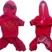 Велюровые костюмы для собак Dogs Bomba