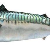 "Игрушка ""Рыба"" пятнистая 6920DT"
