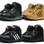 Ботинки Ecco Biom, зима на меху, р. 41-46, код kv-3205