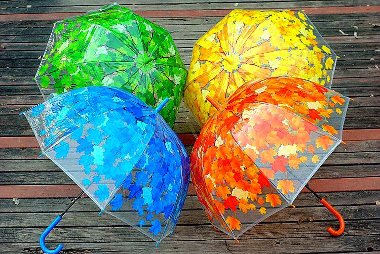 Зонт женский молодёжный прозрачный купольный листья под дождём. фото №1