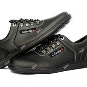 Спортивные туфли мужские демисезонные (РЛТ-8кз)