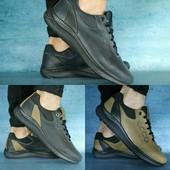 Туфли Ecco, кожа, р. 40-45, код gavk-10689