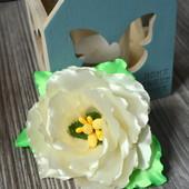 Цветок на резинке нежно-кремового цвета