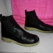 № 2129 стильные сапоги KicKers 41-42 кожа черевики челси ботинки