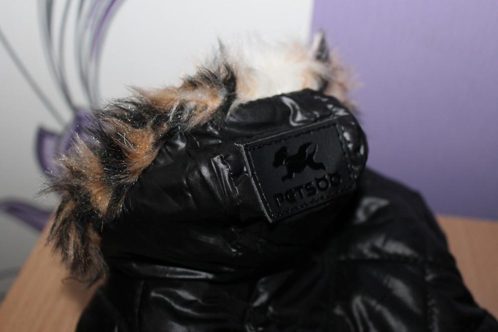 Одежда куртка petsoo для маленьких собак фото №1