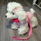 Пудель собака на поводке Simple Story Collection реалистичная