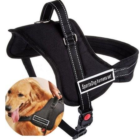 Регулируемый  ремень  безопасности  для  собак  sports dog harness set фото №1