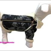 Одежда для собак. Толстовки, костюмы, платья, рубашки