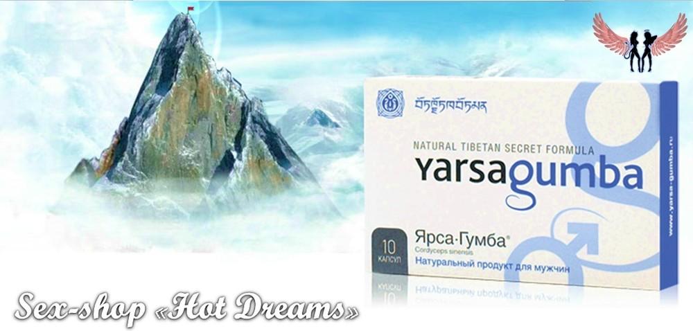 «ярсагумба» — тибетский рецепт для повышения потенции фото №1
