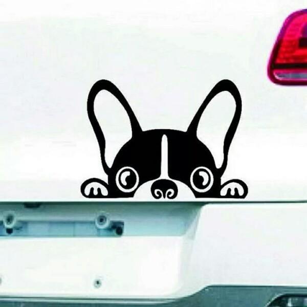 Наклейка на авто с собакой графический авто стикер на автомобиль фото №1