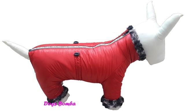 Зимний комбинезон для собак r-10 фото №1