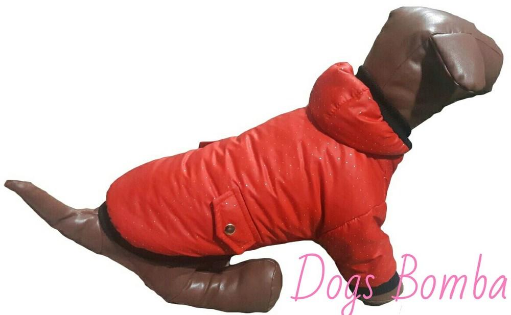 Куртка для собак k-19 фото №1