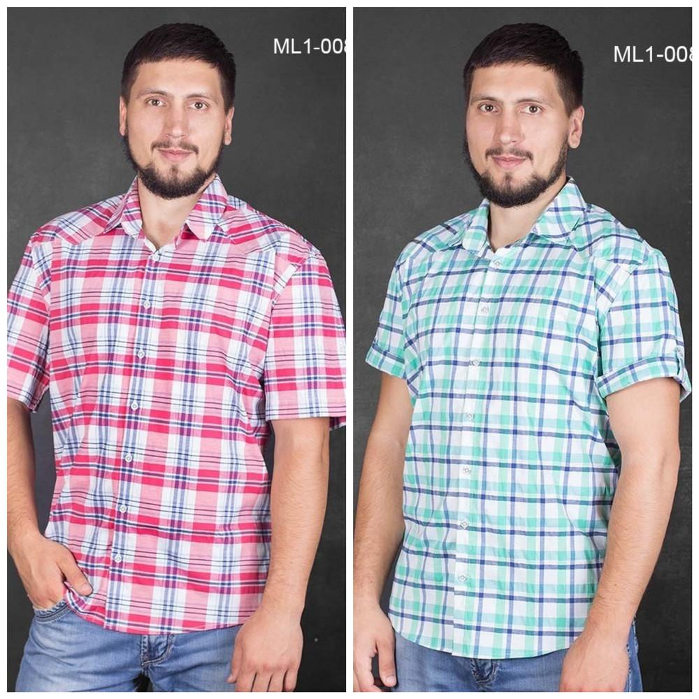 Мужские рубашки с коротким рукавом, размеры 52-60, ml1-008 фото №1