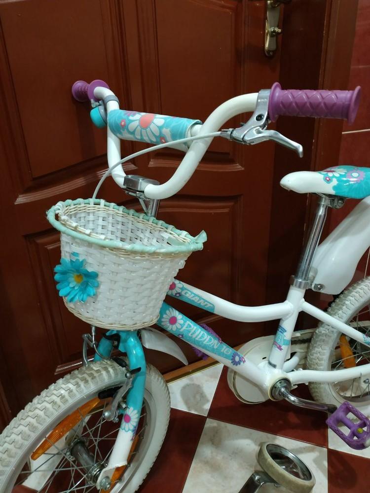Велосипед для девочки giant puddin 16 фото №1