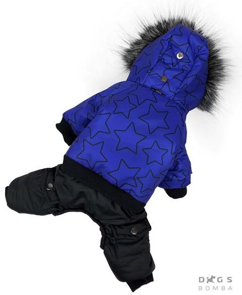 Одежда для собак зимний комбинезон звезды синий фото №1