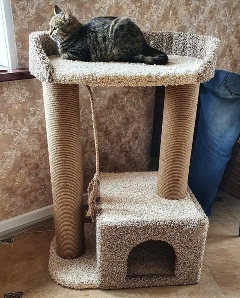 Дом для кота с когтеточкой фото №1