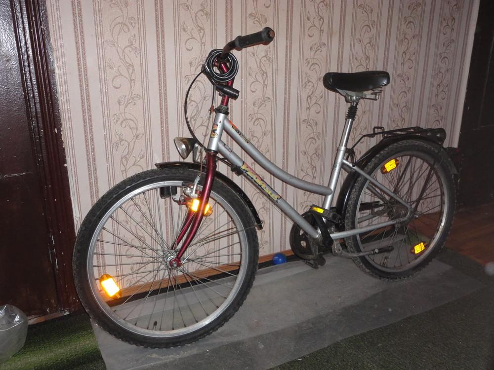 """Велосипед планетарный pegasus 26"""" германия фото №1"""