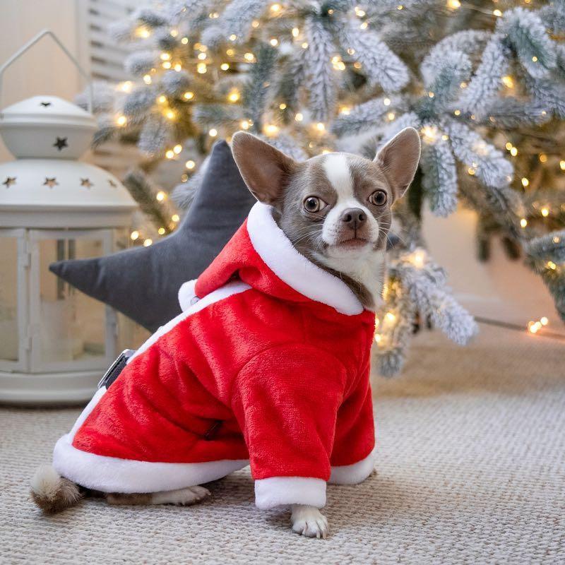 Новогодний костюм для вашего питомца (собака кот ) для мелких пород !!! фото №1